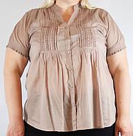 Блуза женская бежевая, большой размер, 54-64 р-ры