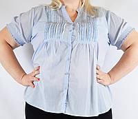 Блуза женская голубая, большой размер, 54-64 р-ры