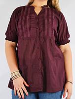 Блуза женская бордовая, большой размер, 54-64 р-ры