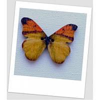 Пуговица деревянная в форме бабочки, цвет жёлтый, размер 28 х21 мм, толщина 3мм, размер отверстия 1,5 мм