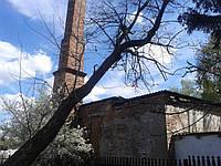 Аварійні дерева., фото 1