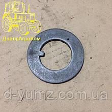 Шайба упорная подшипника переднего колеса ЮМЗ 36-3103020