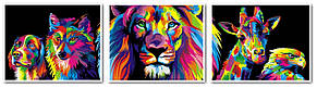Картини за номерами 40х150 див. Триптих Райдужний лев - Цар звірів