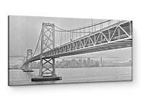 Картина на коже: Мост Сан-Франциско