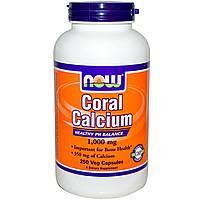 Now Foods, Коралловый кальций, 1 000 мг, 250 вегетарианских капсул