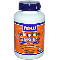 Now Foods, Acidophilus два миллиарда, 250 капсул