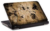 """Наклейка на ноутбук """"Старинные бабочки"""", глянцевая/матовая, для всех моделей ноутбуков"""