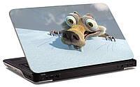 """Наклейка на ноутбук """"Сумасшедшая белка"""", глянцевая/матовая, для всех моделей ноутбуков"""