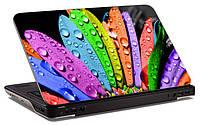 """Наклейка на ноутбук """"Цветные лепестки"""", глянцевая/матовая, для всех моделей ноутбуков"""