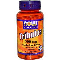 Now Foods, Трибулус, 500 мг, 100 капсул