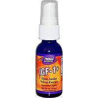 Now Foods, ИФР-1 липосомальный спрей  (30 мл)