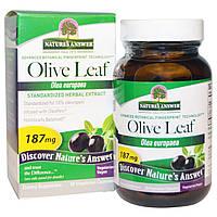 Nature's Answer, OleoPein, Стандартизированный экстракт листьев оливы, 60 вегетарианских капсул