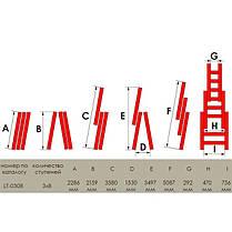 Драбина алюмінієва 3-х секційна універсальна розкладна INTERTOOL LT-0308, фото 3