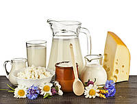Ферменты, стабилизаторы, соли-плавители, ароматы, консерванты, маринады для производства молочной продукции.
