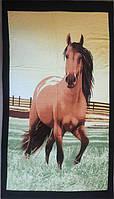 ТМ TAG Полотенце пляжное Лошадь