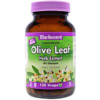 Bluebonnet Nutrition, Экстракт листа оливы, 120 капсул на растительной основе