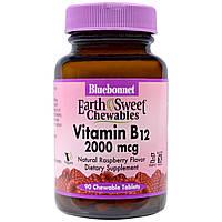 Bluebonnet Nutrition, Жевательные таблетки «EarthSweet», витамин B12, натуральный вкус малины, 2000 мкг, 90 шт