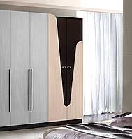 Шкаф распашной Арья 800х520х2200