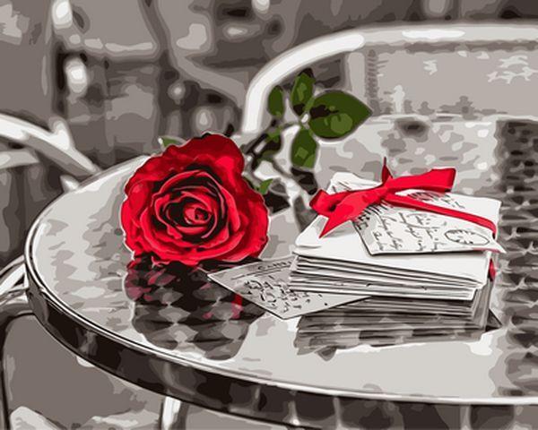 Раскраски для взрослых 40×50 см. Красная роза Фотохудожник Ассаф Франк