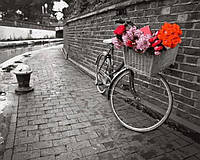 Расскраска по цифрам 40×50 см. Велосипед любви Фотохудожник Ассаф Франк, фото 1