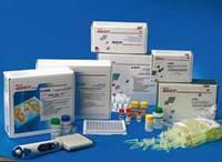 Вектогеп В -HBs-антиген –подтверждающий тест- стрип (комплект 6) D-0586 (6х8)