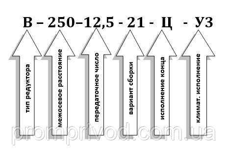 Схема условных обозначений редуктора В-250-12,5