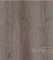 Kastamonu ламинат Kastamonu Floorpan Orange 32/8 мм дуб европейский (FP953)