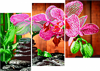 Схема для частичной вышивки бисером Орхидеи и камни