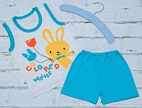 Летний комплект на мальчика Джунгли (шорты и майка)