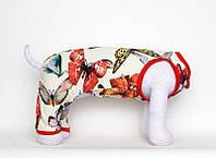 "Костюм трикотажный ""Ляля"" Vip Doggy 26см размер S, фото 1"