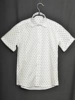Школьная рубашка Кристоф