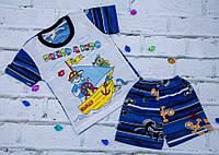 Летний комплект на мальчика Фрегат (шорты и футболка)