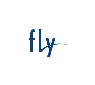 Тачскрины для fly