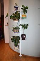 Стена-пол, подставка для цветов, фото 1