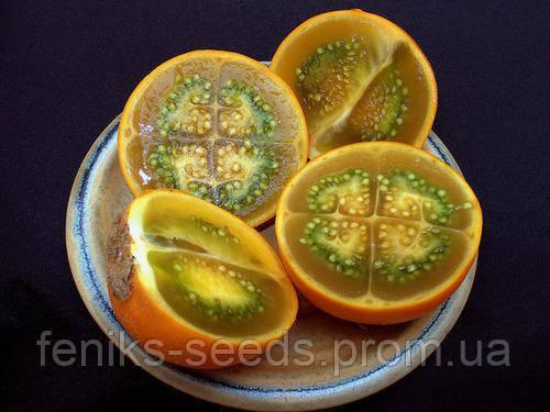 Семена Кантакари - от всех болезней
