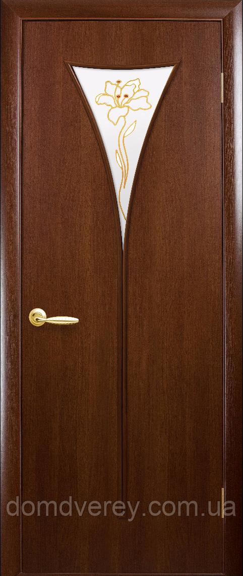Двері міжкімнатні Новий Стиль, МОДЕРН, модель Бора ПВХ, зі склом сатин і малюнком Р3