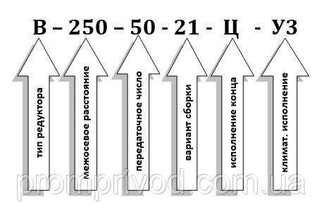 Схема условных обозначений редуктора В-250-50