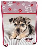 """Сумка для обуви CLASS """"Lovely Pets"""" 97104"""