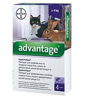 Bayer Advantage 80 - от блох для кошек и декоративных кроликов весом более 4 кг (1 пипетка)
