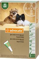 Advocate Bayer, Адвокат капли для собак весом до 4кг, 1 пипетка