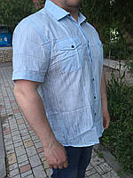 Мужская БАТАЛЬНАЯ  рубашка_ бежевая/голубая