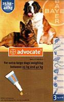 Advocate Bayer, Адвокат капли для собак весом от 25кг, 1 пипетка
