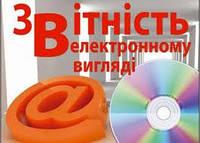 Формування та подача звітності в електронному вигляді Київ