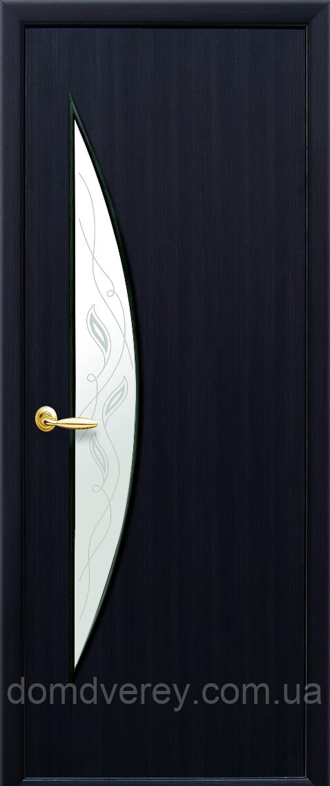 Двери межкомнатные Новый Стиль, МОДЕРН, модель Луна Экошпон, со стеклом сатин с рисунком Р3