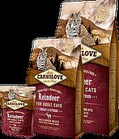 Carnilove REINDEER Adult Cats Energy & Outdoor - беззерновой корм для активных кошек (северный олень), 6кг