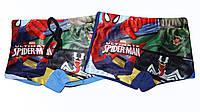 Плавки для мальчиков оптом, Spider-Man, 5-12 рр., арт. 910-291