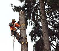 Удаление деревьев, обрезка сада