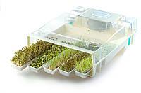 ПРОРАЩИВАТЕЛЬ спроутер EasyGreen США микроферма для проращивания семян, выращивания ростков, фото 1