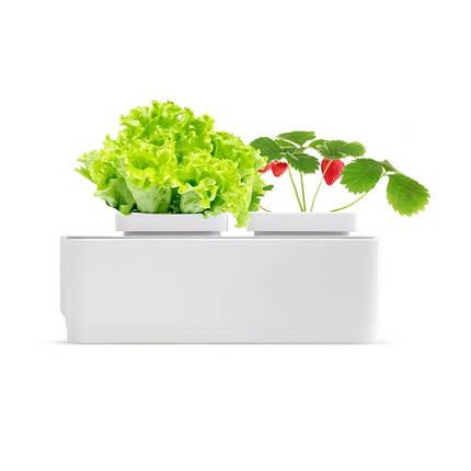 Гидропонная установка Magic Garden mini, фото 2