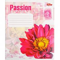 """Тетрадь цветная 36 листов, клетка """"Passion Flowers"""""""